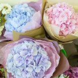 В Серафимовском храме прошла благотворительная цветочная ярмарка