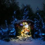 Рождественская благотворительная ярмарка «Елка добра»