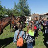 Поездка в конно-спортивный клуб «Ермак»