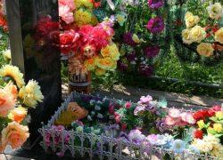 Пластиковые цветы на кладбище-вред для природы и опасность для здоровья