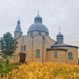 Престольный праздник состоялся в приходе храма Рождества Иоанна Предтечи в деревне Малые Бортники